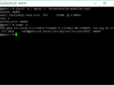 Как узнать тип процессора и версию системы FreeBSD?